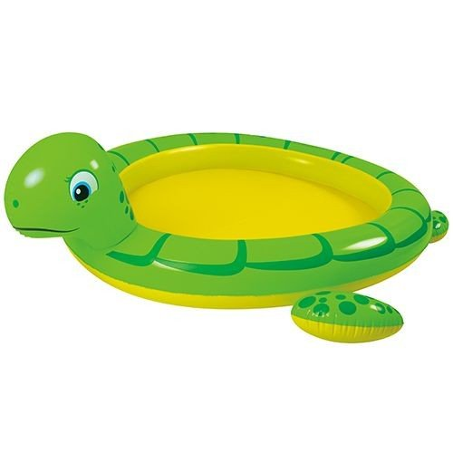 Reuzenschildpad spraypool