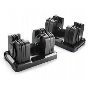 Bowflex 560i SelectTech dumbbells 27.2 kg (2 stuks)