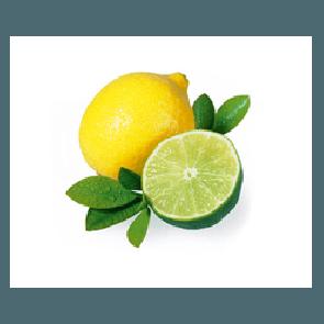 Sauna Opgietmiddel Citrus-limoen Saunageur | 100ml, 1L