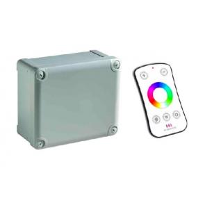 RGBW LED Controller met afstandsbediening (150W | 24V)