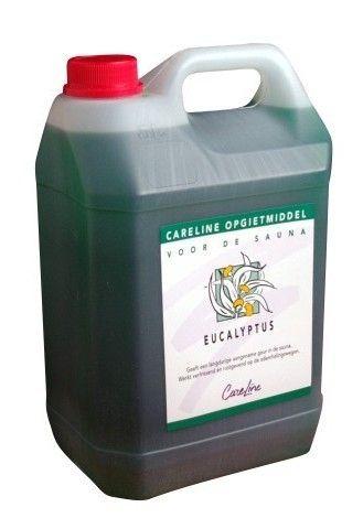 Afbeelding van Saunageur Eucalyptus, Careline 5 L