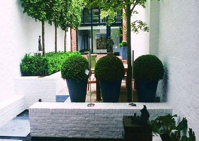 Tuin voorbeeld 2