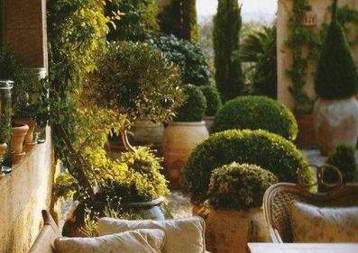 Tuin voorbeeld 1